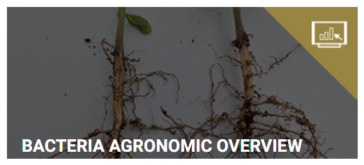 Bacteria agronmic resource cover-LP