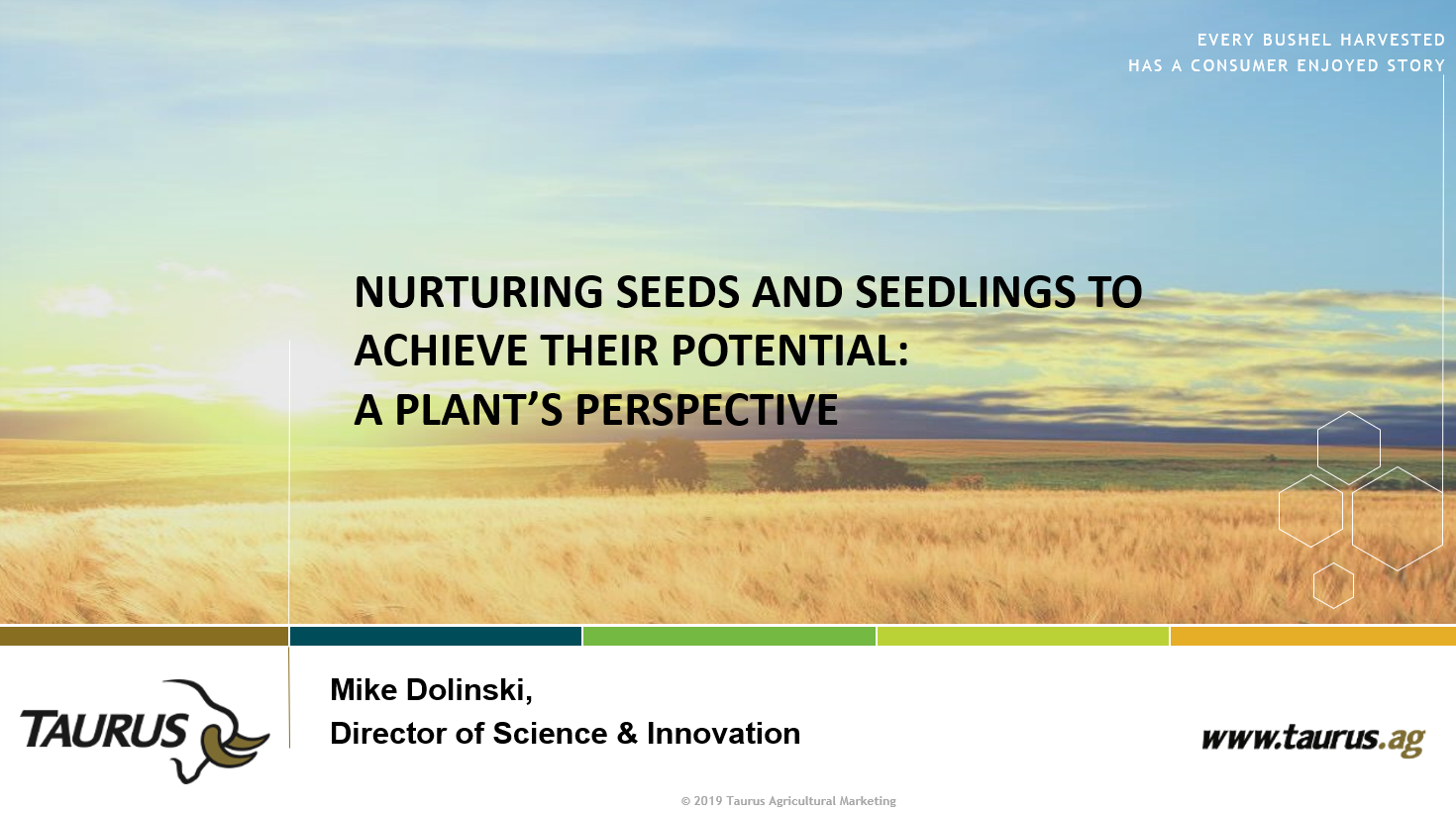 Nurturing seeds cover